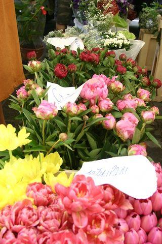 Valerinas flowers
