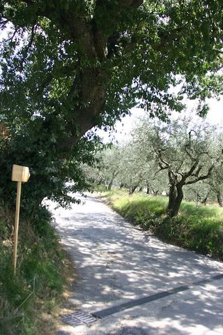 Bike Route to Assisi