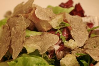 Salad with tartufo bianco