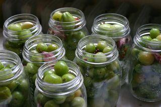Green Tomato Pickles