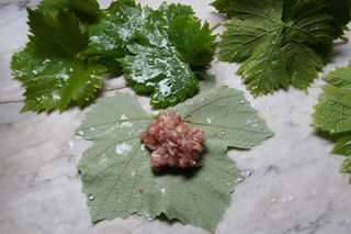 Stuffing Grape Leaves