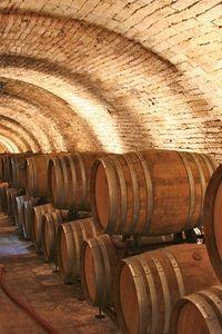 Barrels Cantina Blasi