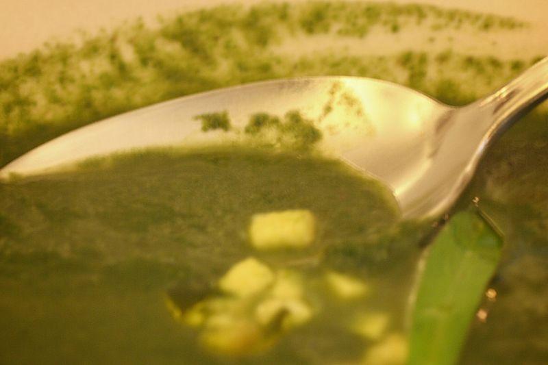 Zuppa di erbe
