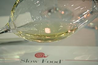 Slow Food Friuli Wine Tasting