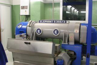 The Elephant Machine