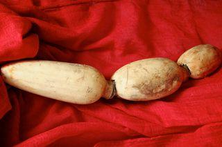 Lotus Root (1)