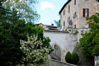Spring in Montone