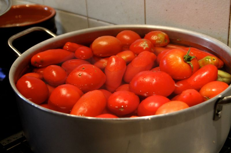 Pot of Tomatoes