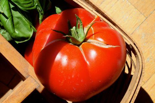 Ripe tomato (1)