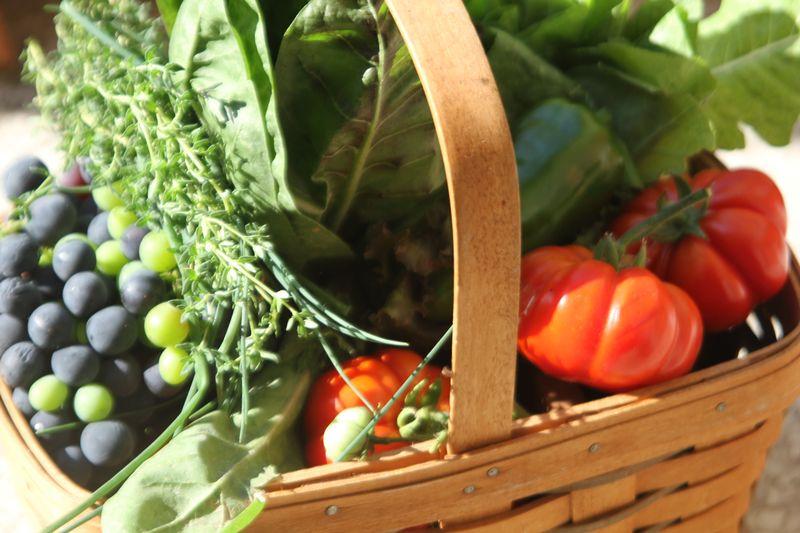 World Kitchen Garden Day