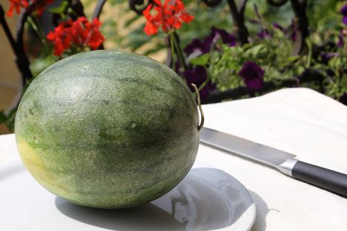 4th of July Watermelon