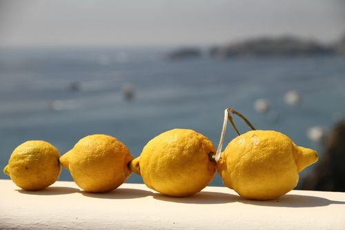 Lemon Train