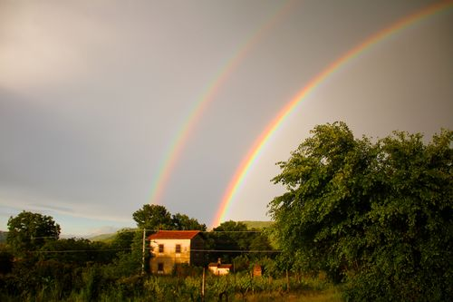 Double Rainbow and House
