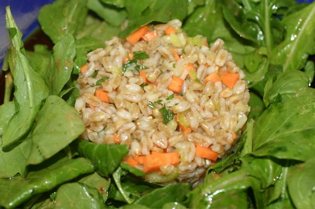 Faro_salad