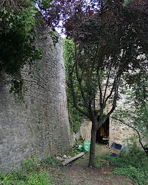 Entrance_3