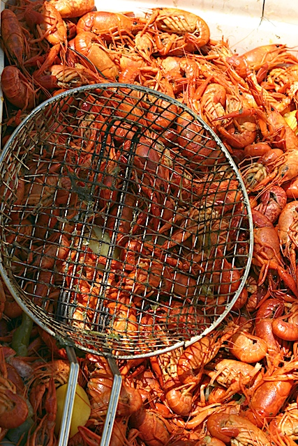 Crawfish_boil