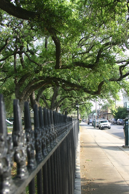 Park_in_the_marigny_district